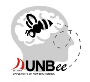brain-bee-logo1-001